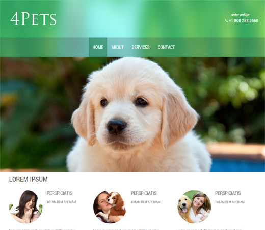 4pets Animals Responsive web Template